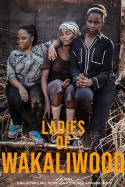 LadiesOfWakaliwood_movie-poster-VFF7270